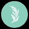 Wild Cedar Logo Mark